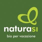 Logo-nsi-2015-quadrato